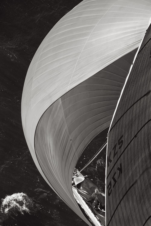 Sail-Majesty-at-Sea-Drew-Doggett-Downwind.jpg