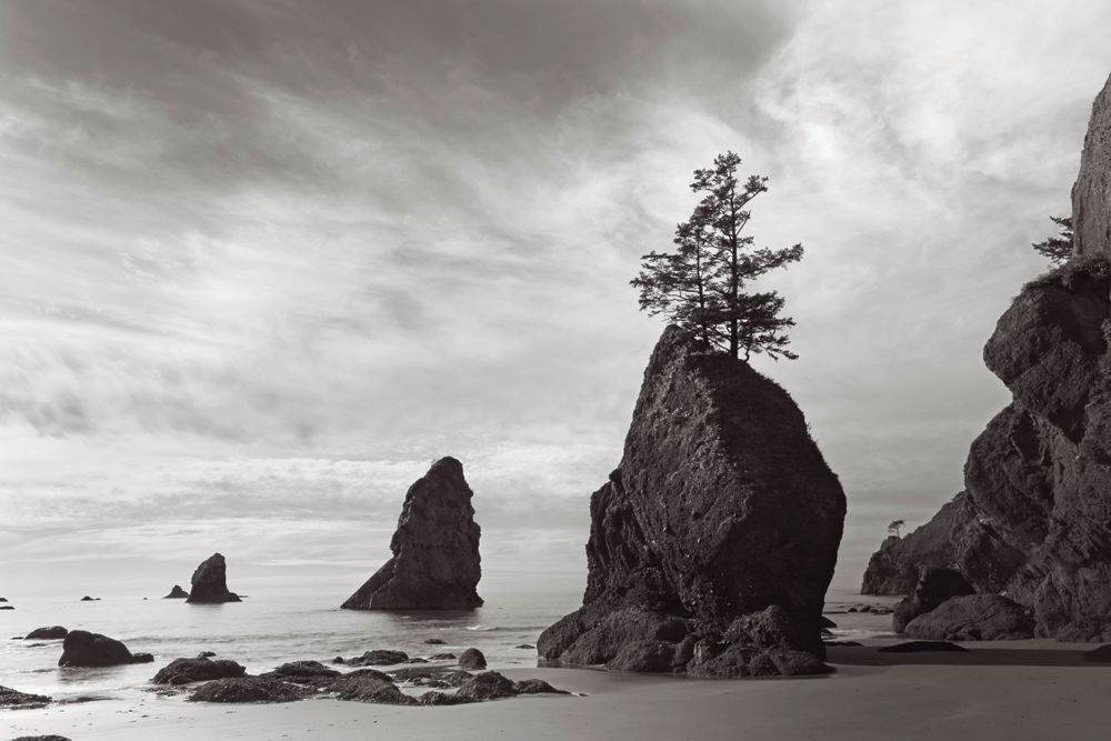 Americas-West-Drew-Doggett-Sea-Stacks.jpg