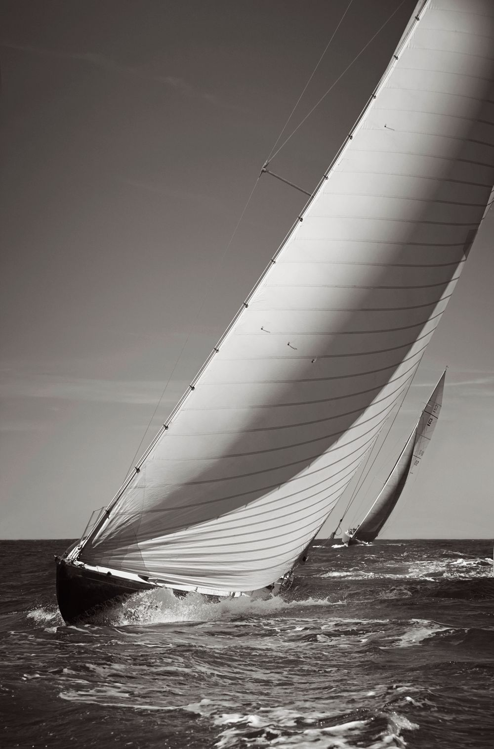 Sail-Majesty-at-Sea-Drew-Doggett-In-Pursuit-of-Northern-Light.jpg