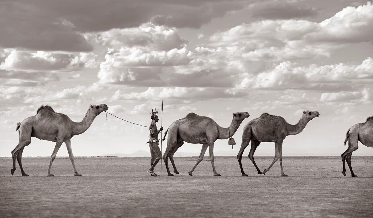 Desert-Song-Compositions-of-Kenya-Drew-Doggett-Arteti-Leading-Camels.jpg