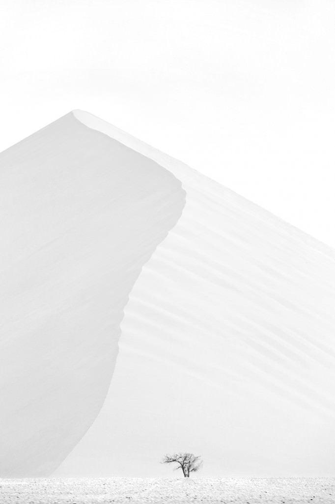 Dunes-Landscapes-Evolving-Drew-Doggett-Desert-Rising-682x1024.jpg