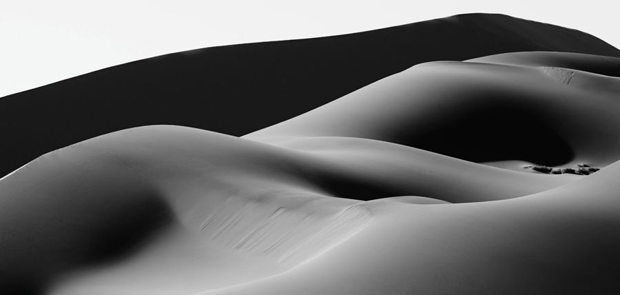 Dunes-Landscapes-Evolving-Drew-Doggett-At-Rest-blog.jpg