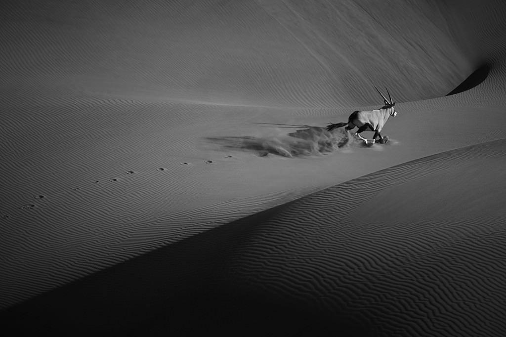 Dunes-Landscapes-Evolving-Drew-Doggett-Wild-Solitude-1024x682.jpg