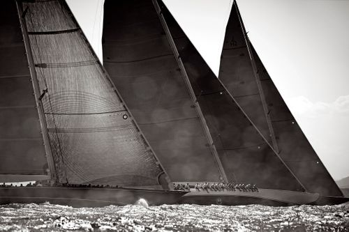 Sail-Majesty-at-Sea-Drew-Doggett-At-The-Start.jpg