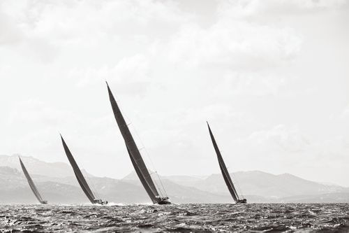 Sail-Majesty-at-Sea-Drew-Doggett-In-Sync.jpg