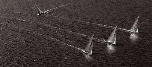 Sail-Majesty-at-Sea-Drew-Doggett-Divergence.jpg