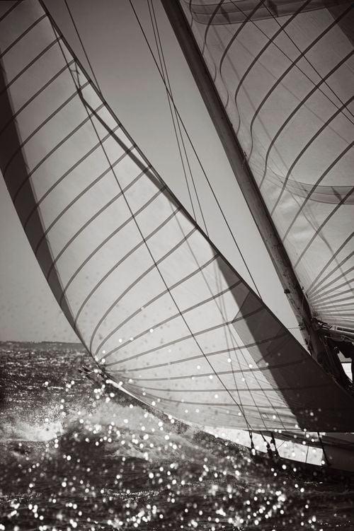 Sail-Majesty-at-Sea-Drew-Doggett-Glisten.jpg
