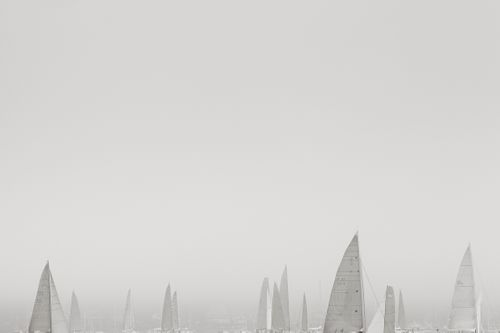 Sail-Majesty-at-Sea-Drew-Doggett-White-Out.jpg