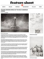 FS-article-web-2.jpg