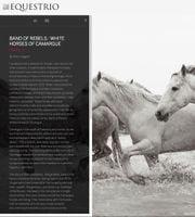 equestrio.jpg