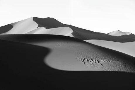 Dunes-Landscapes-Evolving-Drew-Doggett-Light-in-Profile.jpg