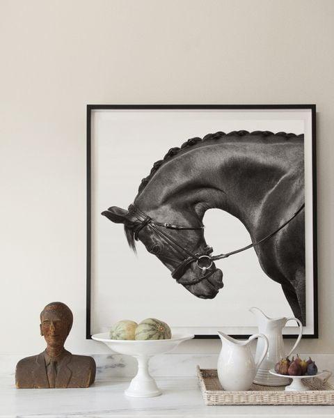 Drew-Doggett-Equus-Light-and-Form-Nautilus-III